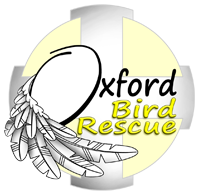 Oxford Bird Rescue Logo